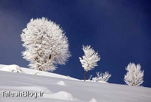 کوه های گیلان در محاصره برف