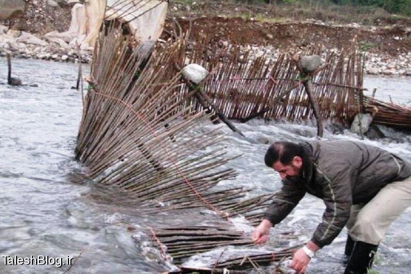 تخریب 8 سد ماهیگیری و کشف 105 فقره سرقت در هشتپر